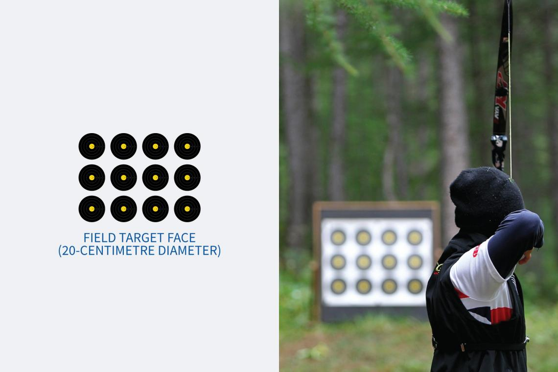 Diagram of a 20-centimetre field archery target face.
